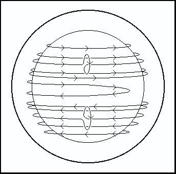 A schematic of the Sun's magnetic field lines from the alpha-omega dynamo