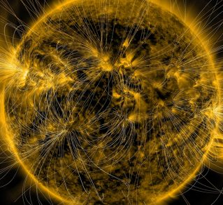 An image of the Sun overlaid with magnetic field lines