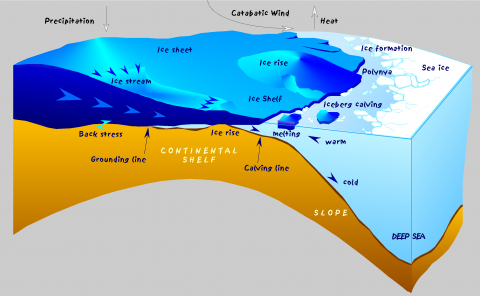 Diagram of Antarctic ice shelf at the ice-ocean boundary