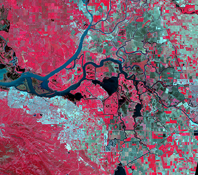 False-color satellite image showing California's Sacramento–San Joaquin River Delta.