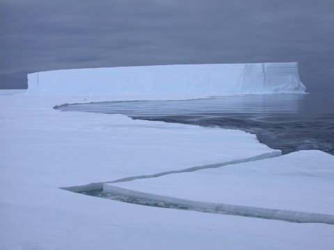 Sea ice and icebergs in the Weddell Sea