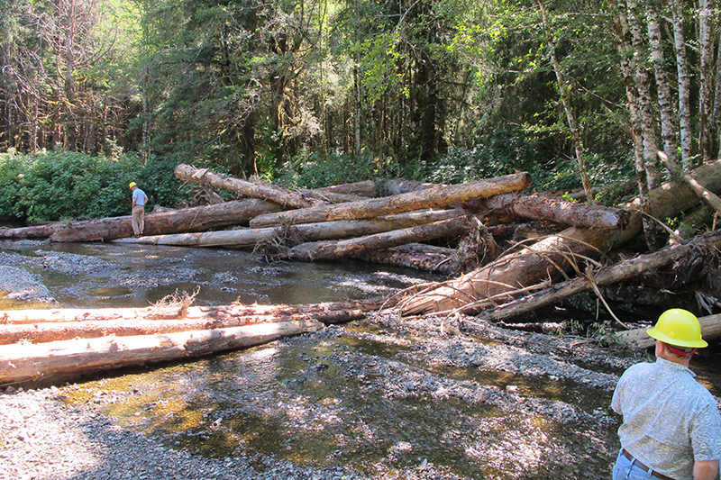 U.S. Forest Service employees inspect a large log structure on a creek on Prince of Wales Island, Alaska.