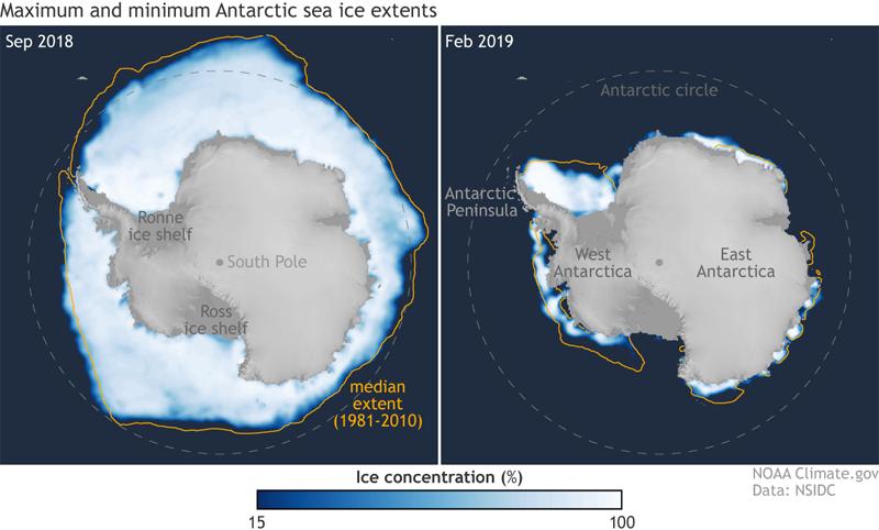 Comparison of sea ice concentration in the Southern Ocean around Antarctica in winter 2018 and summer 2019