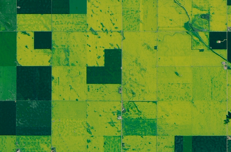 Satellite image of green squares of farmland
