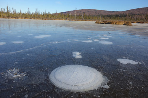 Methane bubbling in Arctic lake