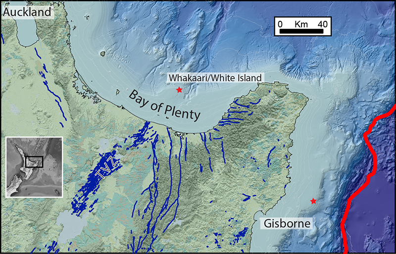Map showing the location of the Bay of Plenty off the northern coast of New Zealand