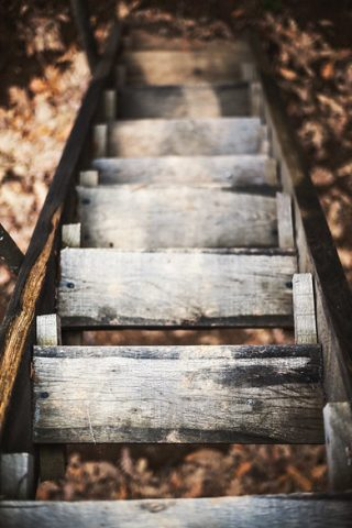 Photograph of wooden steps