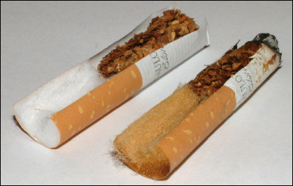 A photograph of a cigarette bisected lengthwise to show the tobacco and filter