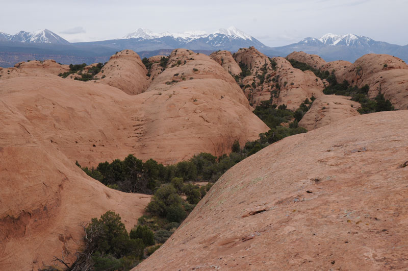 Sandstone landscape in front of snow-topped mountains