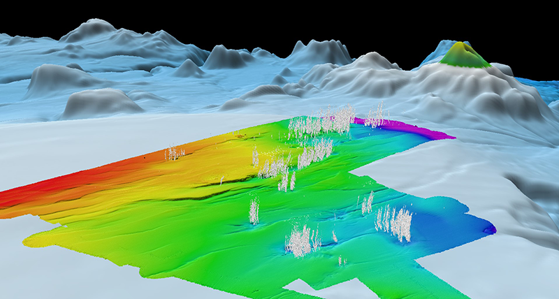 Synthetic image of the Calypso hydrothermal vent field showing sites where streams of gas bubbles rise from the seafloor