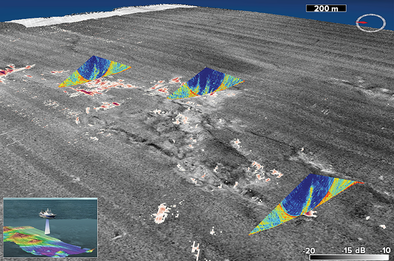 Swath echograms recorded by a multibeam echo sounder over a gray scale map of the seafloor reflectivity