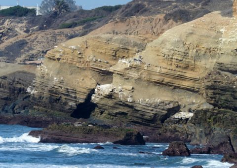 Photo of beige, layered rock at the edge of the ocean