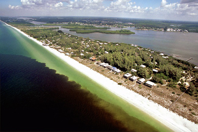 Florida red tide