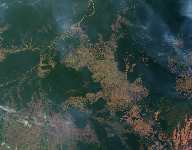 Satellite image of grids of development in the Amazon rain forest
