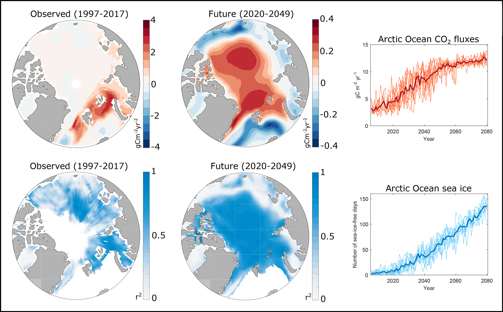Observed trends and projections for mean CO2 flux and ice-free days in the Arctic Ocean