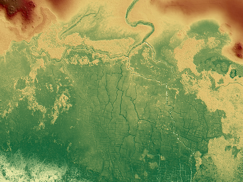 Ancient Maya Farms Revealed by Laser Scanning