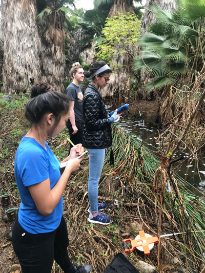 Three researchers take notes along a small creek lined with palm trees.
