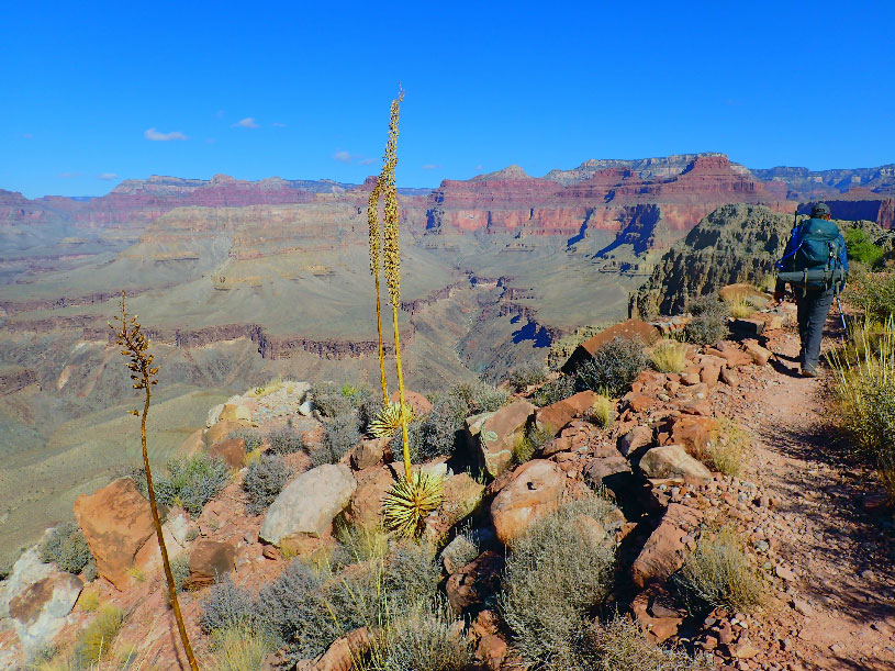 A backpacker descends into the Grand Canyon from the South Rim on the Hermit Trail.