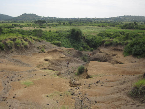 People in a dried outcrop near a lush green area