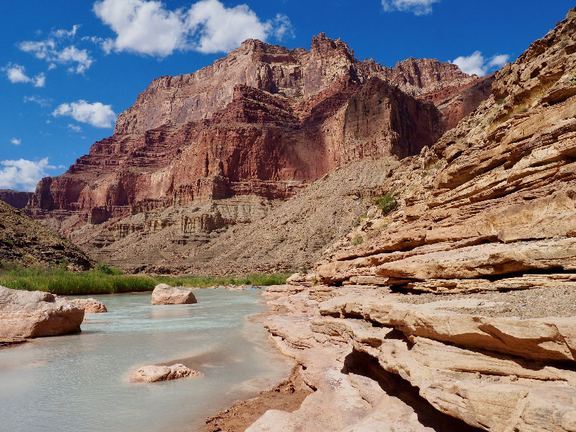 A milky blue river flows past sandstone ledges just upstream from where the Little Colorado River meets the main channel of the Grand Canyon.