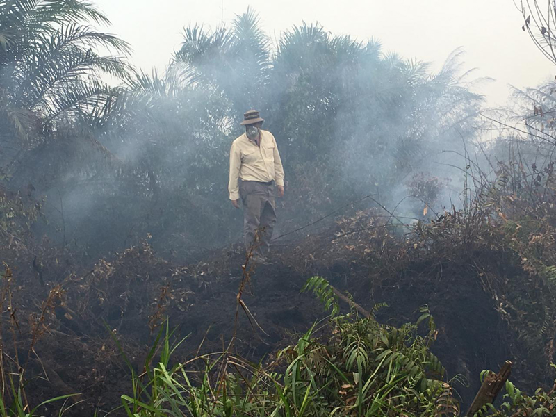 A man in a gas mask stands atop a smoldering tropical fire.