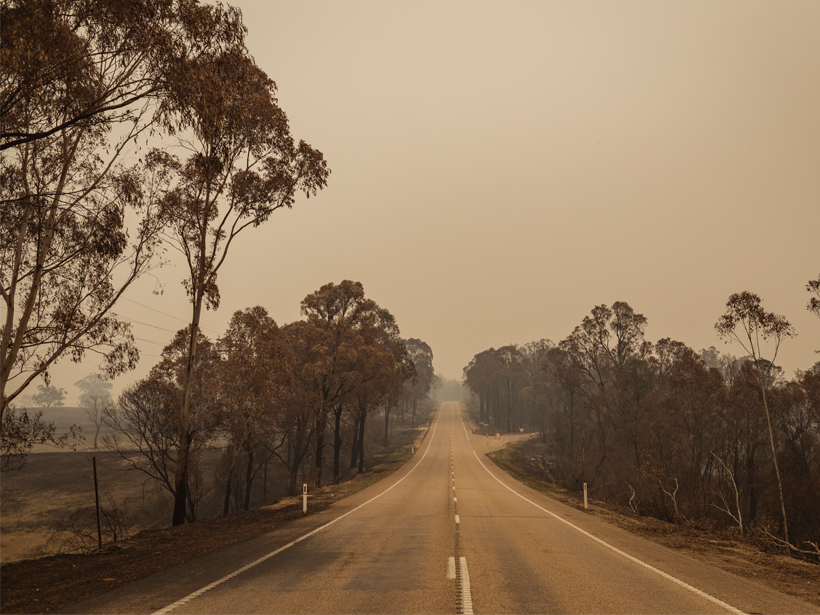 Five Environmental Consequences of Australia's Fires