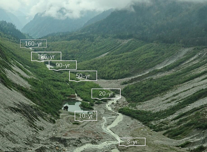 Retreating glacier with vegetation succession marked from 3 years to 160 years
