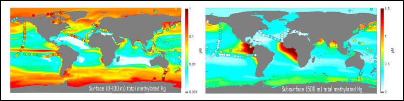 World maps showing concentrations of methylated mercury in the oceans