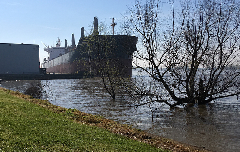 A ship towers over the levees of the Mississippi River in New Orleans on 23 March 2019.