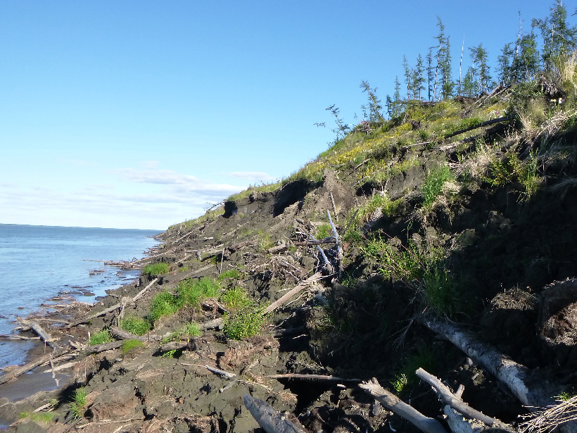 Organic Matter in Arctic River Shows Permafrost Thaw - Eos
