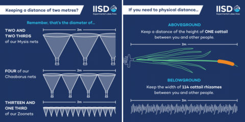 Tips on social distancing for IISD-ELA