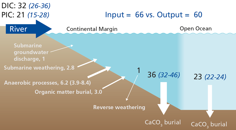 Schematic showing the alkalinity balance of the present-day ocean