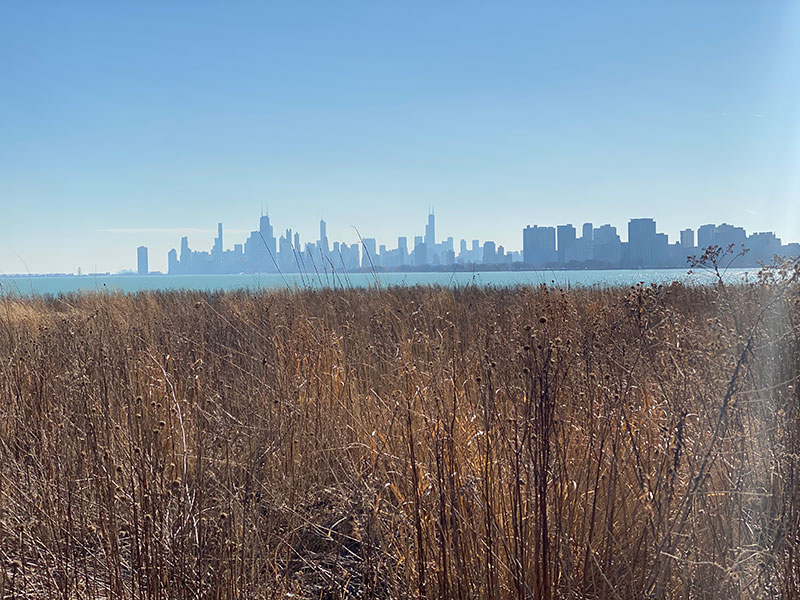 A view across Montrose Harbor in Chicago