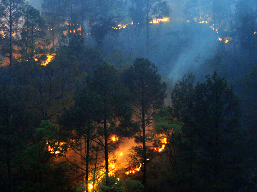 Massive fire spreads over the forested hills of Uttarakhand, India
