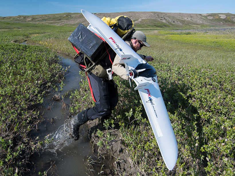 Scientist with a drone and heavy backpack treks through a tiny creek on the tundra