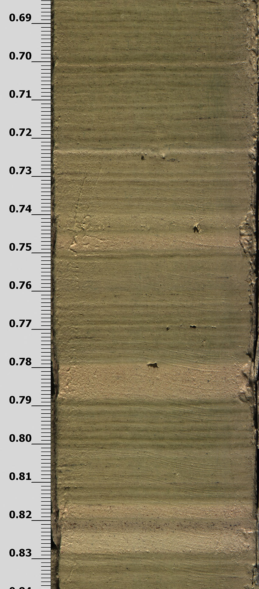 A part of the sediment core retrieved by researchers from the Great Blue Hole off Belize showing the different layers of sediment deposits