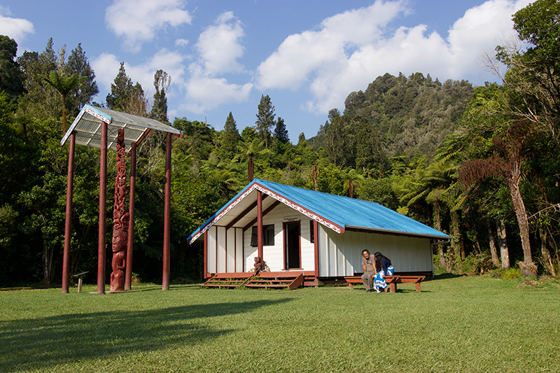Blue-roofed marae nestled among New Zealand native bush