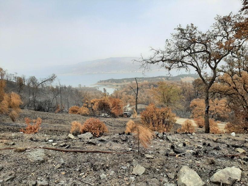 Burned landscape near Lake Curry, Calif.