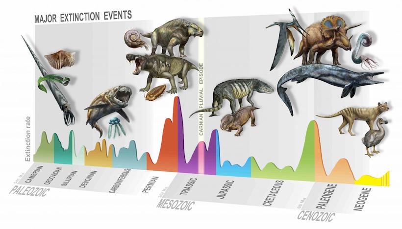 An illustrated timeline showing the order and magnitude of Earth's mass extinction events, including the Carnian Pluvial Episode.