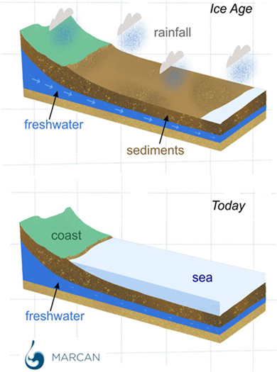 Schematic figure showing how freshened groundwater was deposited offshore when the seafloor was exposed at lower sea-levels