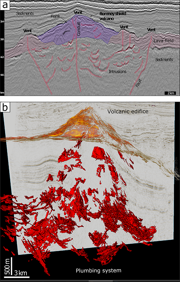 Seismic reflection images of volcanic plumbing systems buried in sedimentary basins offshore New Zealand's North Island