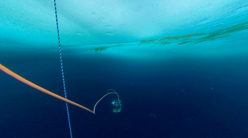 A photograph of the ROV underwater