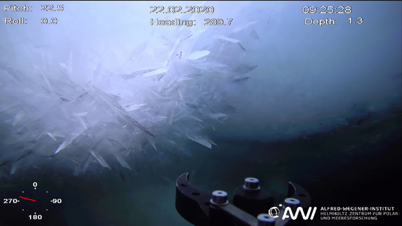 Footage from Beast shows platelet ice underwater