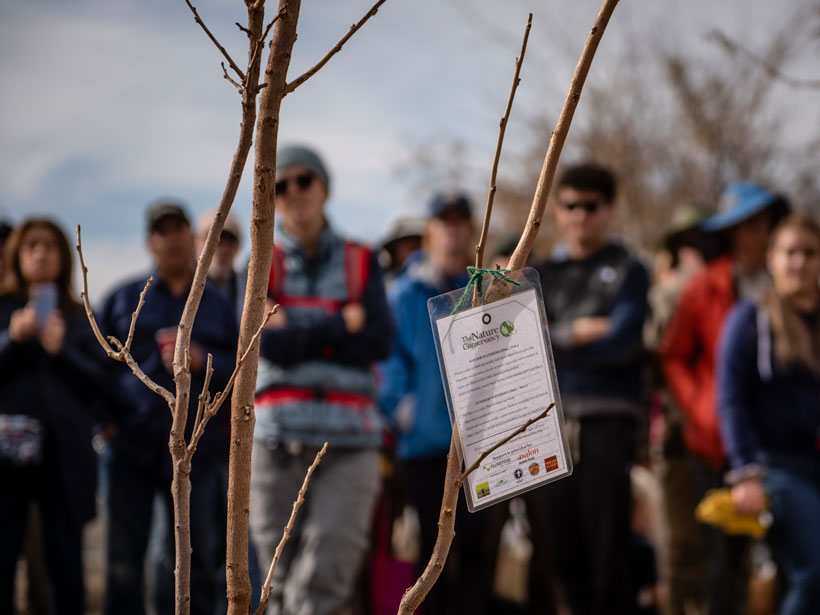 The Nature Conservancy works in Albuquerque to plant climate-ready trees to support community forest management.