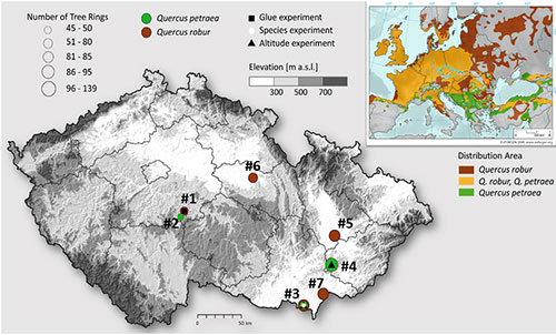 Map of the Czech Republic showing where samples of two species of oak trees were taken for a new study