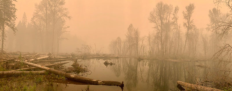 The restored floodplain of the South Fork McKenzie River during the 2020 Holiday Farm Fire.