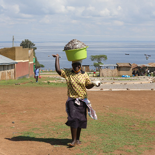 A smiling woman carrying a large basket of fish on her head walks away from Lake Victoria.