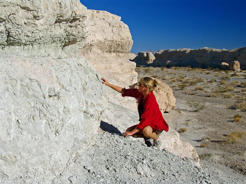 A geologist crouches next to an outcrop of white rocks with a desert landscape in the background.