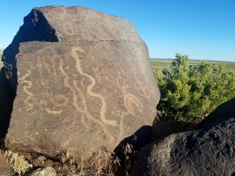 Abstract etchings adorn a rock in the Nevada desert.