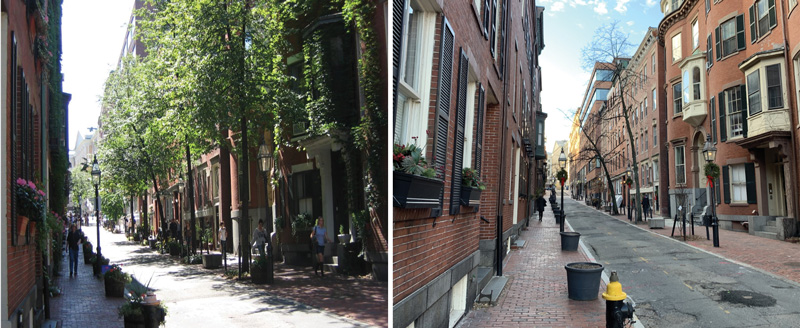 Photos taken in 2010 and 2021 show changes in trees on Temple Street in Boston